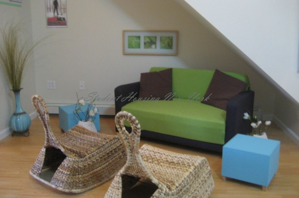 Cozy 3 bedroom apartment