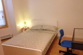 Zimmer NO17-1